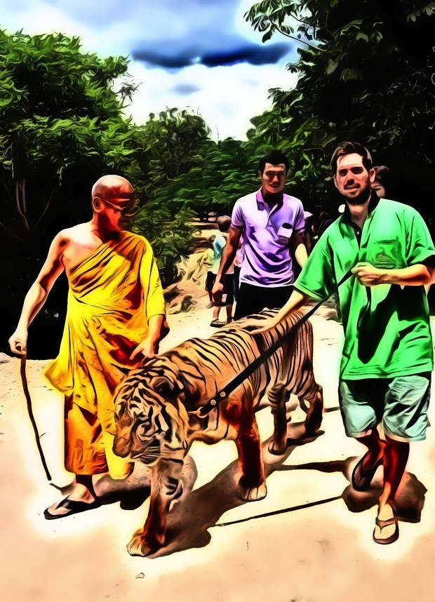 Tiger Temple Volunteer Around the World in 80 Jobs
