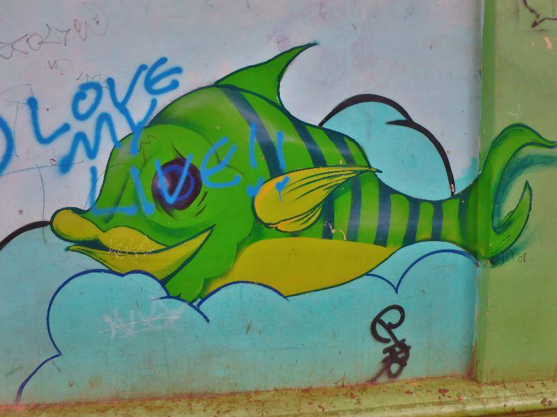 brasil graffiti art