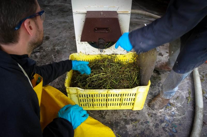Balsamic Making in Modena Italy Emilia Romagna-24