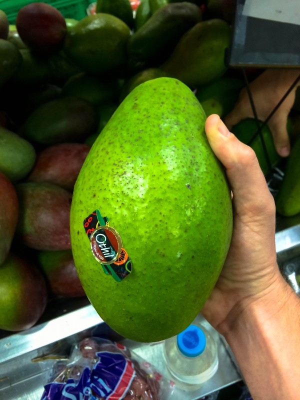 The biggest avocados ever in Brazil